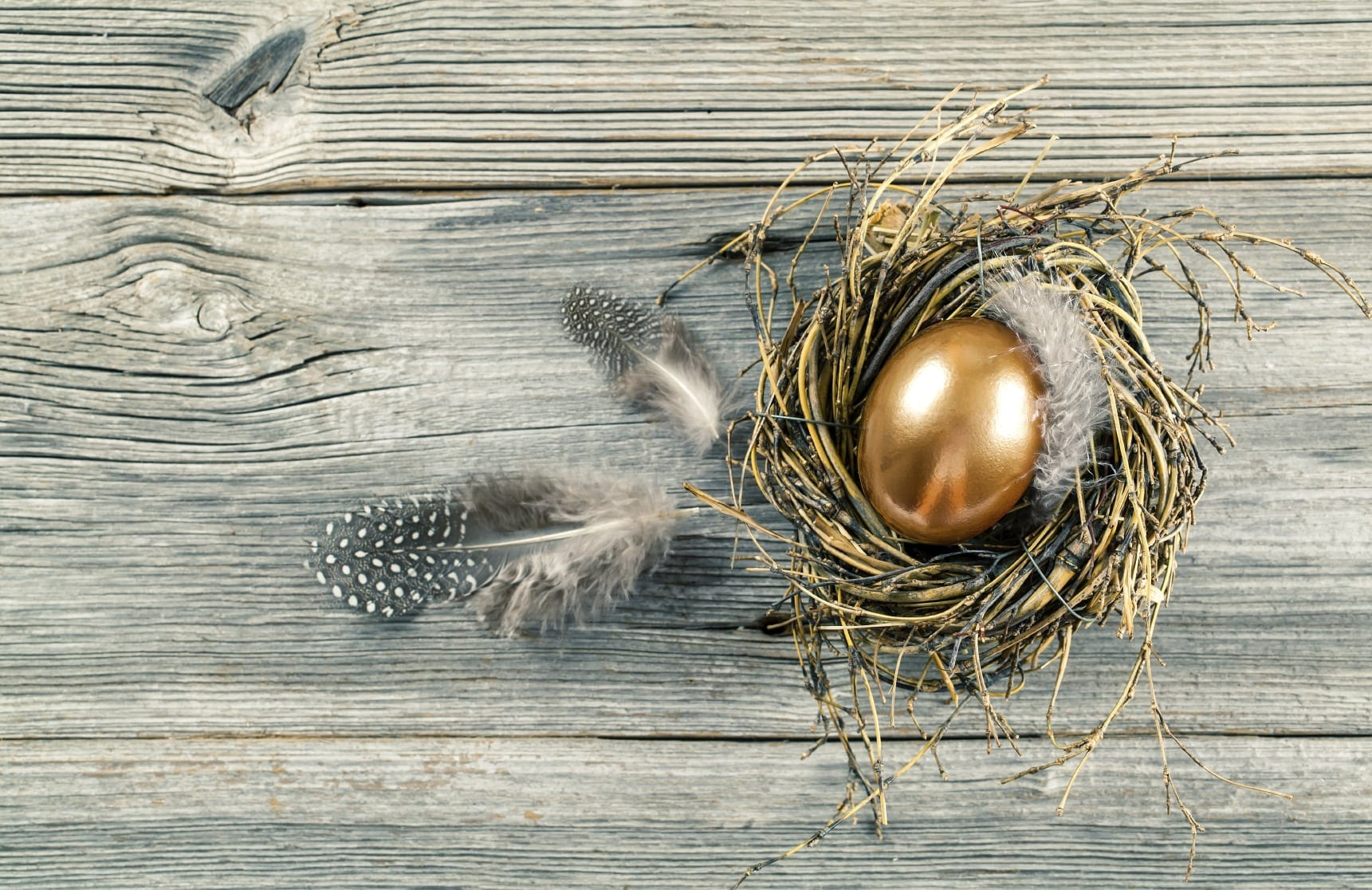 Golden Egg, Bird's Nest Decoration